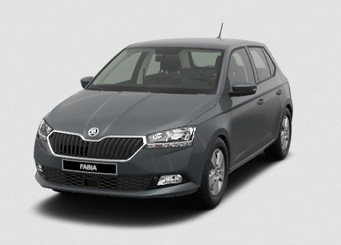 skoda fabia new ambition 1.0 tsi 95hp mt5 - cars4europe